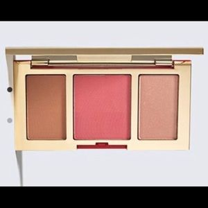 NEW Estée Lauder Pure Color Envy Cheek Palette